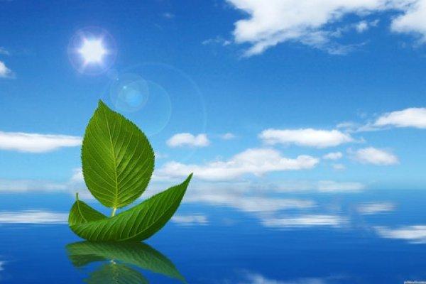 ekologicheskij_kongress